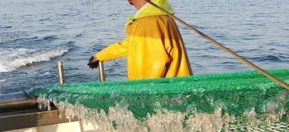 Precious fishermen feedback